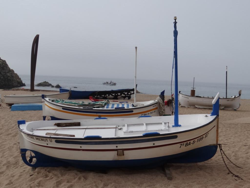 DSC06570