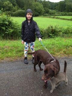 walkingdog1