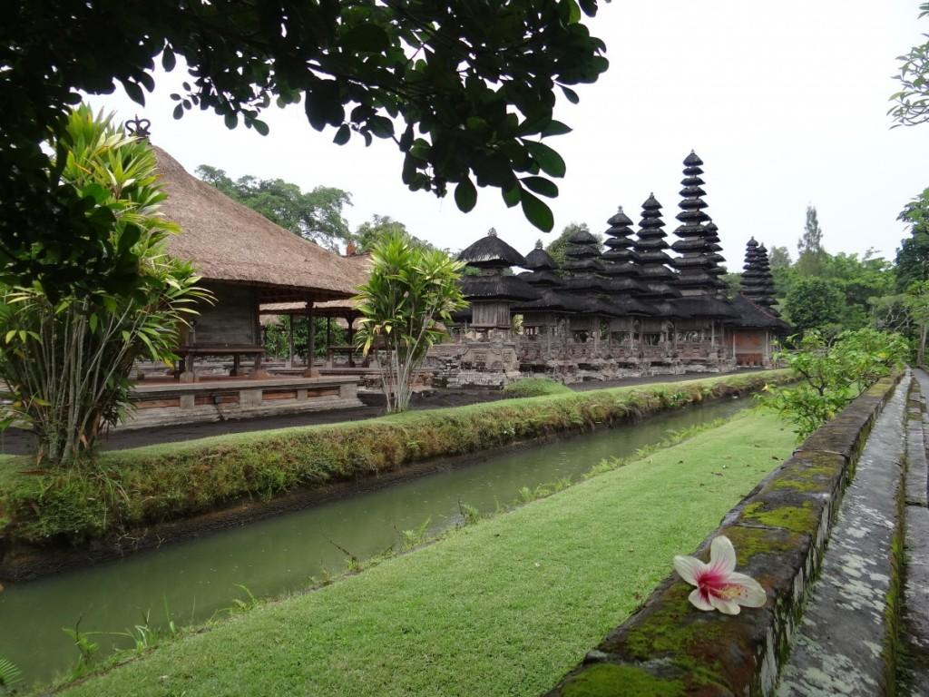 Alliance Indonesia