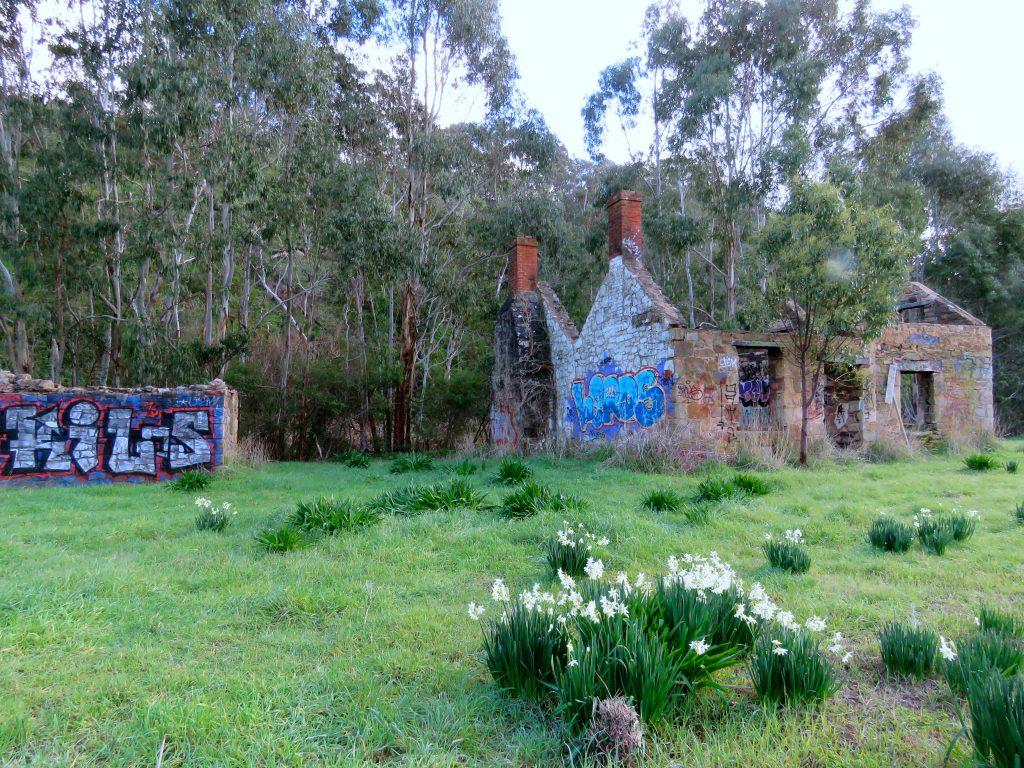 ©Exploramum and Explorason - Scott Creek, South Australia - nearby ruins