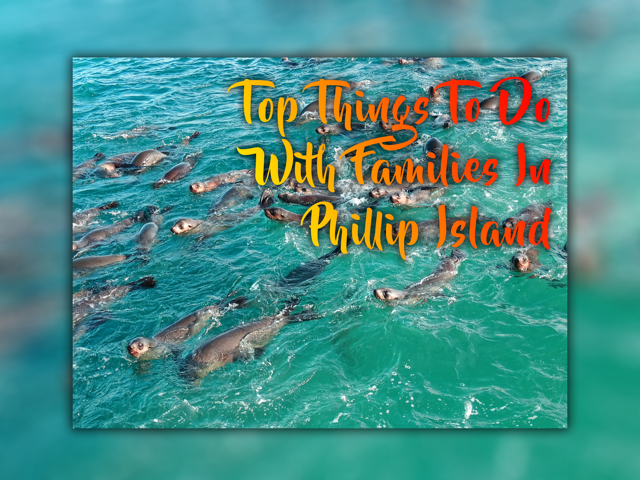 Phillip Island for Families