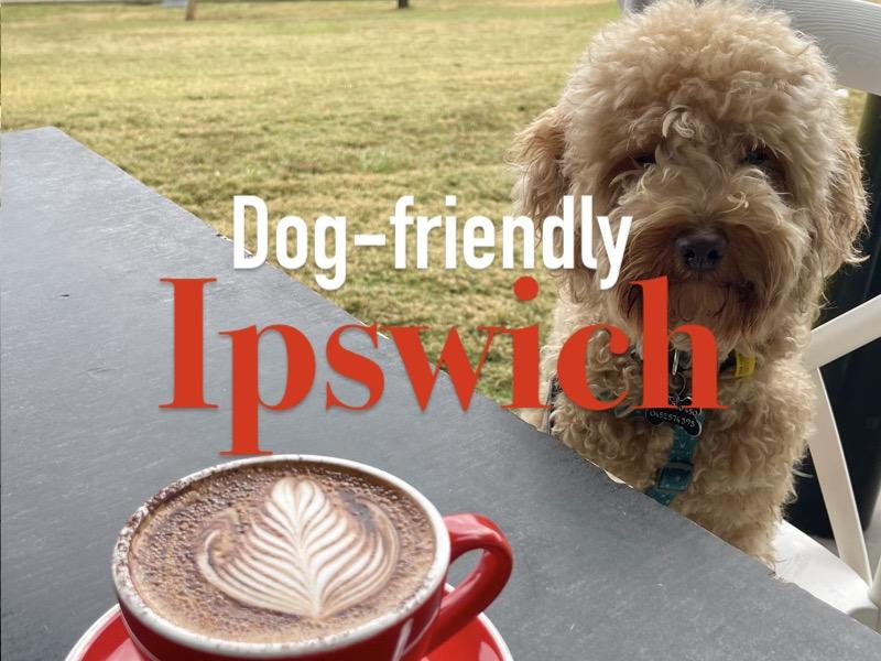 Dog-friendly Ipswich